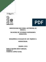 Hemostasia-Informe.
