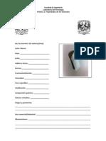 catalogominerales.pdf