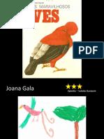 Joana Gala