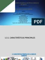 Subtema 1.3.1 Caracteristicas de La Cadena de Suministros