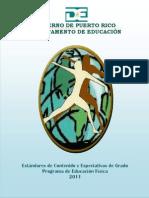 Estandares y Expectativas_EDFI 2011