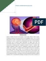 ECV-ORIGINAL (3).docx