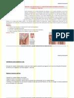 herniainguinal_2010 (1).pdf