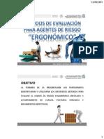 Evaluacion Agente de Riesgo Ergonomico (2)