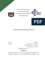 Gestion Integral de Activos Fisicos Pas 55