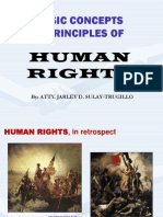 Law Human Rights Law