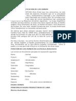 CLASE DE OVINOS (1).docx