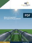 Retos Gas Natural (1)