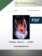 Programa Do Curso de Endodontia 2013 (1)