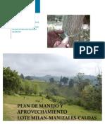 Plan de Manejo y Aprovechamiento Forestal Torres de Milan