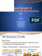 Experiment 3- Graphite Phagocytosis