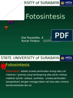 PPT FOTOSINTESIS