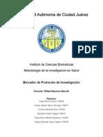Borador de Protocolo Con Resumenes de Articulos