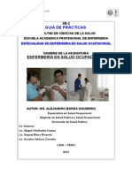 Guia Practica Espec Salud Ocupa- V2 II-2013