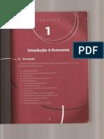 Introdução a Economia Volume 1 (scanner)