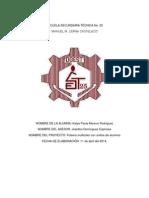 Proyecto Artesanal Tec. 25 Pulsera