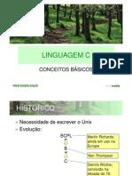 Linguagem_C_Roteiro_Semestral.pdf