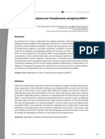 Dialnet DegradacionDeNalcanosPorPseudomonasAeruginosaMGP1 2986556 (1)