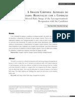 Artigos / Articles