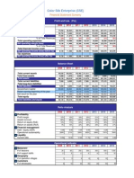 STRAMA ColorSilkEnterprise_Financial Annex