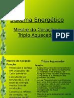Sistemas Energéticos (2)