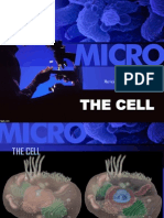 3 The Cell