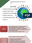 Sistemas Internacionales de Protección de Los Derechos Humanos