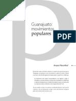 Guanajuato Movimientos Populares