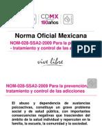 4. Presentación NORMA 028