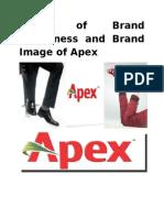 Brand Management of Apex Shoe