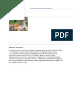 hewan dan tumbuhan.docx