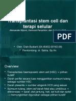 transplantasi stem sel