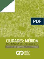 1. Ciudades Mérida 2014 Reporte Mario Molina