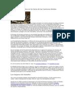 Los Órganos Basados en La Carta de Las Naciones Unidas
