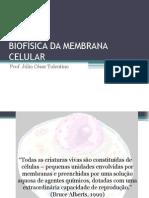 Biofísica Da Membrana Celular