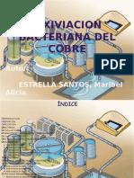 biolixiviaciondelcobre-130411110606-phpapp02