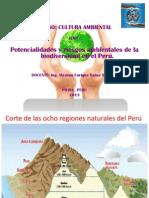 Clase 3. Poten y Riesg. Ambiente de La Biodiversidad en Perú