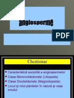 Angiosperme