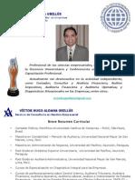 Organizacion Papeles Trabajo Auditoria Financiera