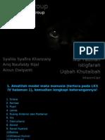 The Eye Group.pptx