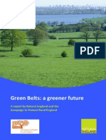 a greener future.pdf