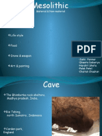 Mesolithic Material & Non-material