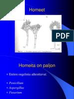 Homeet