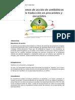 Mecanismos de Acción de Antibióticos Sobre La Traducción en Procariotes y Eucariotes