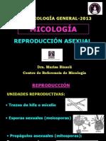 2o Clase Conidiogenesis 2013