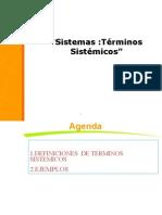 TERMINOS_SISTEMICOS.ppt