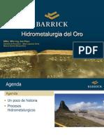 Hidrometalurgia Del Oro 2013- Ponencia JPezo