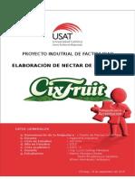 PROYECTO INDUTRIAL DE FACTIBILIDAD - Elaboraci+¦n de N+®ctar de Maracuy+í