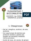 OLEAGINOSAS Y BIOCOMBUSTIBLE- CLASE 3.ppt