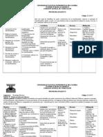 ProgramaAnaliticoFinal-Tecnología